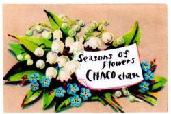 チャコちゃんの季節のお花
